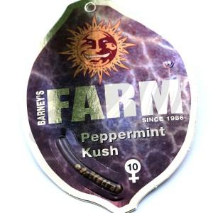 Peppermint Kush feminised купить в Украине