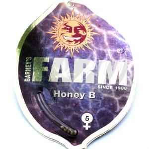 Honey B Feminised купить в Украине