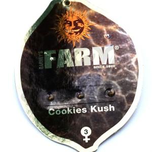 Cookies Kush Feminised купить в Украине