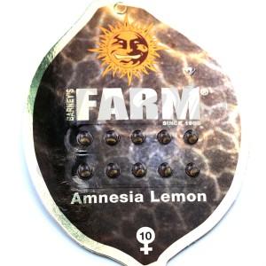 Amnesia Lemon Feminised купить в Украине