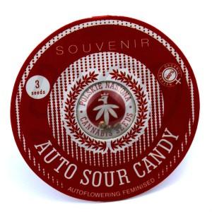 Auto Sour Candy Feminised купить в Украине