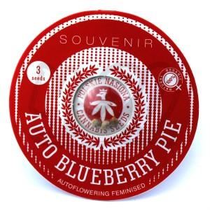 Auto Blueberry Pie Feminised купить в Украине