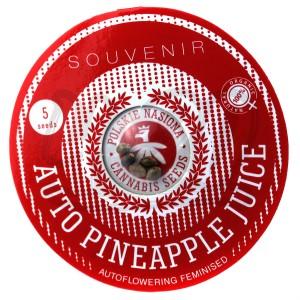 Auto Pinneapple Juice Feminised купить в Украине