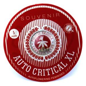 Auto Critical XL Feminised купить в Украине
