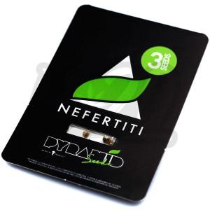 Nefertiti Feminised купить в Украине