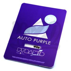 Auto Purple Feminised купить в Украине