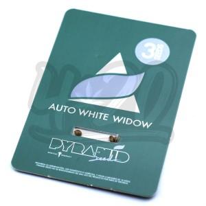 Auto White Widow Feminised купить в Украине