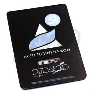 Auto Tutankhamon Feminised купить в Украине